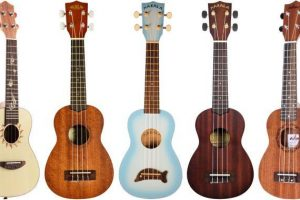 ukuleles beginner reviews