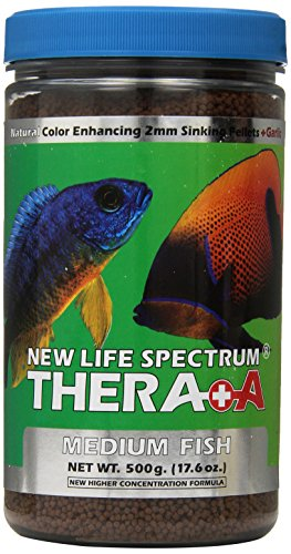 top 10 best fish food reviews tropical and saltwater b4bestreviews