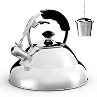 Buy Tea Kettle - Surgical Whistling Teapot with Capsule Bottom