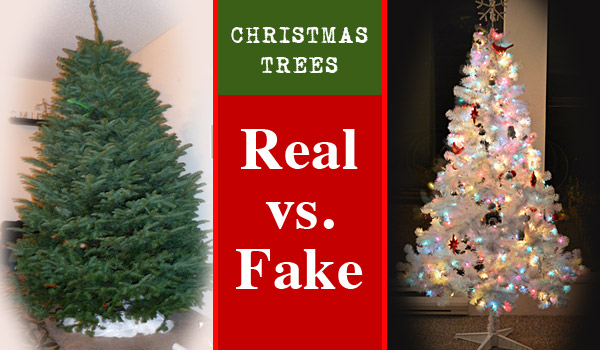 christmas trees real vs fake reviews