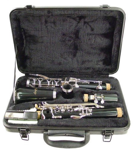 Buy Hisonic Signature Series 2610 Bb Orchestra