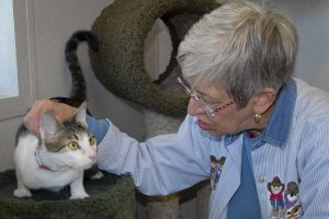 Importance of Pets for Seniors